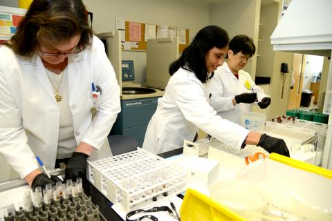 Reproductive Endocrinology Lab | Weill Cornell Medicine